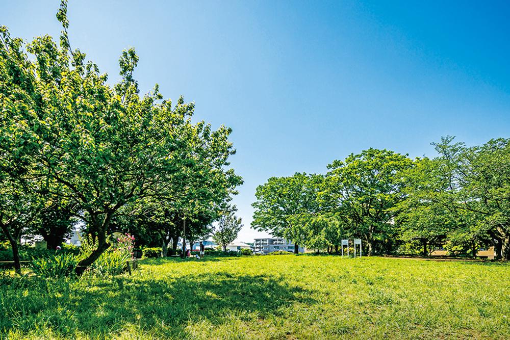 入江町公園 約220m(徒歩3分)