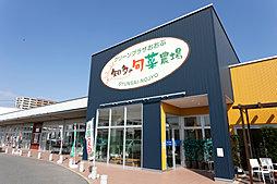 グリーンプラザおおぶ「知多の旬菜農場」 約230m(徒歩3分)