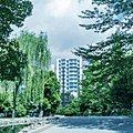 プレミスト日本橋浜町公園