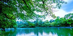 県立大宮公園 約470m(徒歩6分)