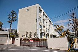 市立 白鳳小学校 約450m(徒歩6分)