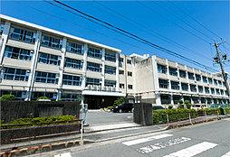 陽南中学校 約360m(徒歩5分)