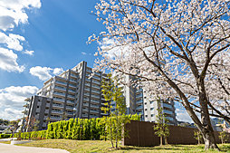 グランリビオ高見七条 桜の杜の外観