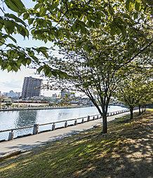 徳島中央公園 約300m(徒歩4分)