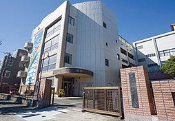 豊橋市立新川小学校 約240m(徒歩3分)
