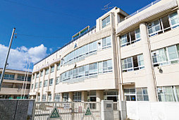 市立柳小学校 約640m(徒歩8分)