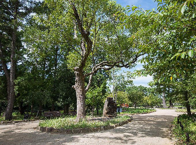亀城公園 約630m(徒歩8分)