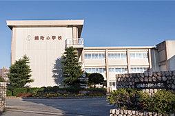 安城市立錦町小学校 約760m(徒歩10分)