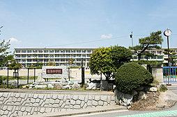 市立 竜海中学校 約1,420m(徒歩18分)※南門まで