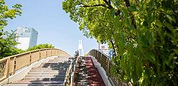 現地周辺の街並み(センパの橋) 約430m(徒歩6分)