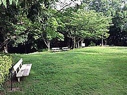 多聞台緑地風景