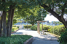 蟹ヶ谷のぞみの丘公園まで約270m(徒歩4分)