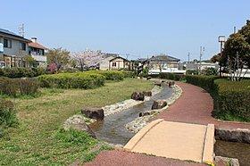 整備された緑道により、毎日散歩やジョギングが楽しめます。