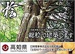 【総桧住宅】すべての建物を総桧で建築します。日栄商事は高知県と「土佐材パートナー企業」を結んでいます。通し柱・管柱・土台すべてに使用