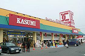 カスミ那珂店まで1100m(徒歩13分・車4分)