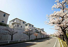 春には桜が満開になり、四季を満喫することができます。