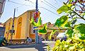 【国立駅徒歩13分の好立地】文教地区の美しい町並みと駅前の利便性が心地よく融和した邸宅