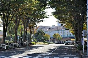 成瀬駅(平成29年10月撮影)