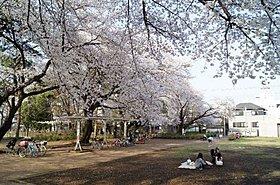 清瀬中央公園 徒歩15分(約1,000m)