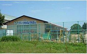 河曲幼稚園(約500m)