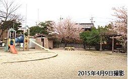 桜島公園 約710m