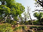 自然豊かな「つつじヶ丘公園」