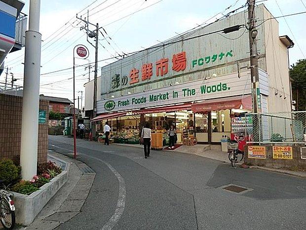フードセンターわたなべ増尾店