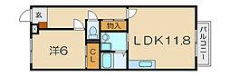 滋賀県東近江市大森町の賃貸アパートの間取り