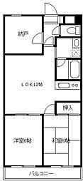 シャンポール新城[502号室]の間取り