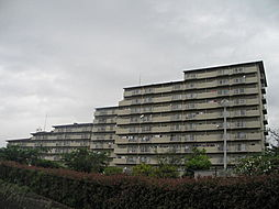 グリーンタウン香里ヶ丘 C棟[9階]の外観