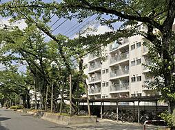 拝島駅 2.3万円