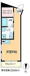 ヴェスパーマティーニ亀有 5階ワンルームの間取り
