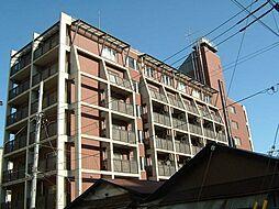 KS−Dio[6階]の外観