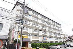 神奈川県海老名市国分南1丁目の賃貸マンションの外観