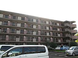柏桜レジデンス[202号室]の外観