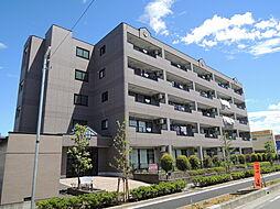 埼玉県川口市大字安行藤八の賃貸マンションの外観