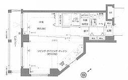 エルミタージュ蒲田南 4階1LDKの間取り