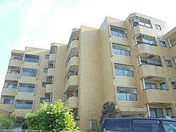 神奈川県横浜市港南区最戸2丁目の賃貸マンションの外観