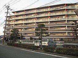 アンピールマンション太宰府[411号室]の外観