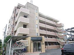 神奈川県厚木市妻田東3丁目の賃貸マンションの外観