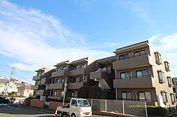 神奈川県横浜市青葉区榎が丘の賃貸マンションの外観