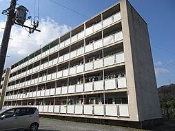 ビレッジハウス広江 1号棟[301号室]の外観