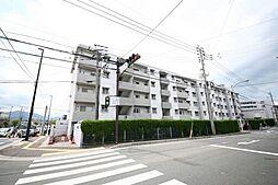 日商岩井弥生マンション[3階]の外観