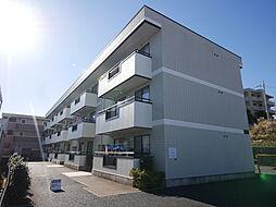 神奈川県厚木市船子の賃貸マンションの外観