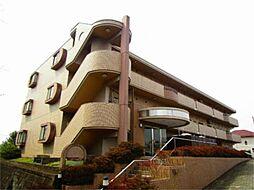 神奈川県川崎市麻生区白鳥2丁目の賃貸マンションの外観