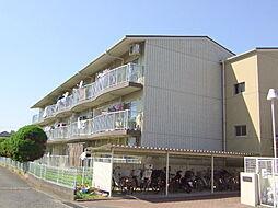 神奈川県川崎市多摩区長尾4丁目の賃貸マンションの外観