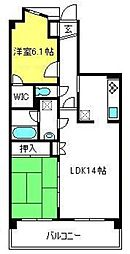 埼玉県さいたま市大宮区堀の内町3丁目の賃貸マンションの間取り