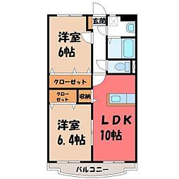 栃木県小山市駅南町3の賃貸マンションの間取り