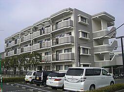神奈川県平塚市御殿3丁目の賃貸マンションの外観