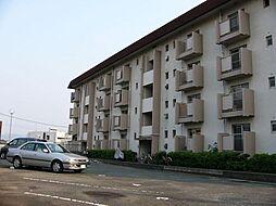 コ−ポ皿山[4階]の外観